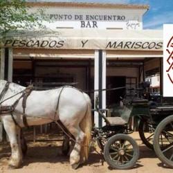 carruaje-en-bar-restaurante-Punto-de-Encuentro-en-el-Rocio-Huelva